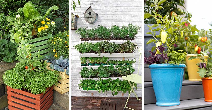 Decora tu balc n con un huerto casero foro decoraci n - Como hacer un huerto en el jardin ...